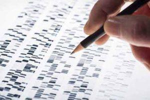 Bei einem Ein Vaterschaftstest werden die genetischen Profile von Vater und Kind verglichen.