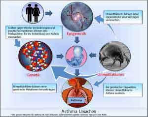 Hausstauballergie und allergisches Asthma sind erblich.