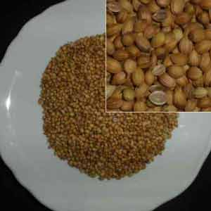 Gegen Eisenmangel hilft Cardamom, das viel Eisen enthält.