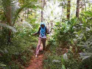 Malaria ist nicht nur in den Tropen verbteitet.