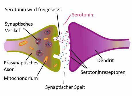 mangel på serotonin