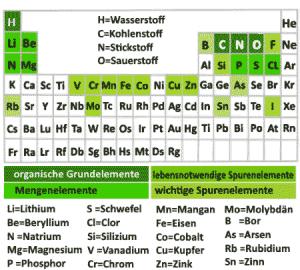 Zu den Vitalstoffen zählen auch Mineralstoffe, das sind anorganische Elemente, die in unterschiedlichen chemischen Verbindungen vorkommen.