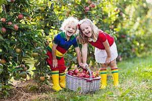 Die beste Vorbeugung gegen Vitaminmangel bei Kindern sind eine gesunde Ernährung und Bewegung im Freien.
