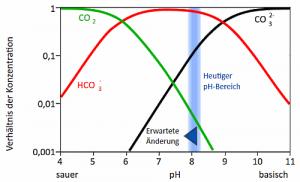 Bei hoher Karbonhärte kann der pH-Wert im Aquarium ansteigen, so wie in den Weltmeeren durch den CO²-Anstieg.