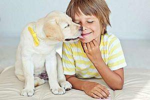 Kinder und Haustiere können sich beim Spielen gegenseitig mit Darmparasiteninfizieren.