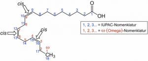 Eine der Omega-3-Fettsäuren ist die Alpha-Linolensäure.
