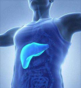Als Hepatitis wird die Entzündung der Leber bezeichnet, umgangssprachlich wird die Krankheit auch Gelbsucht genannt.