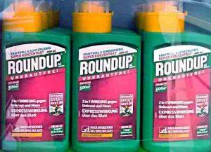 Glyphosat ist in vielen Herbiziden enthalten, am bekanntestsn ist Roundup.
