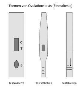 Ovulationstests für den Einmalgebrauch gibt es in verschiedenen Formen.
