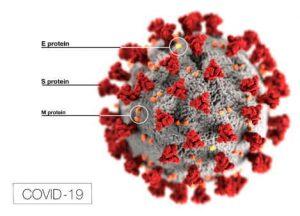 Mit einem Schnelltest lässt sich das Coronavirus nachweisen.