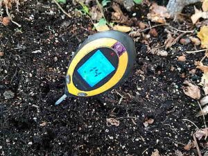Mit einer Bodenanalyse können Sie Nährstoffe und Schadstoffe in Ihrer Pflanzerde bestimmen.