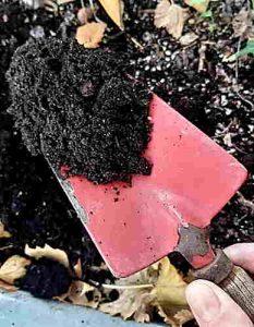 Die Basis einer Bodenanalyse ist eine Bodenprobe.