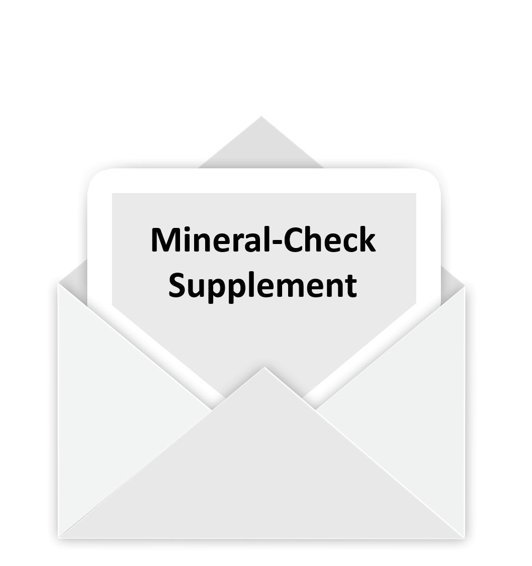 Mineral-Check Supplement 1 St.